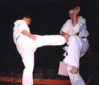 Чемпионат Украины по киокушинкай карате