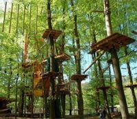 Открытие веревочного парка