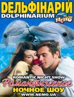Романтическое ночное шоу