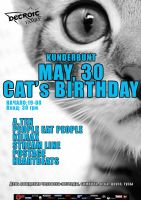 День рождения Кота!