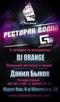 DJ Orange и Данил Быков