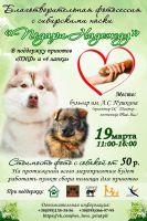 Благотворительная фотосессия с сибирскими хаски