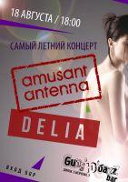 Amusant Antenna & Delia