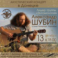 Акустический концерт Александра Шубина