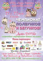 Чемпионат ползунков и бегунков