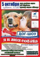 Дог-шоу «Я и моя собака»