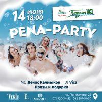 PENA-PARTY
