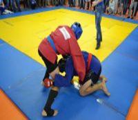 Чемпионат Донецкой области по боевому самбо среди мужчин