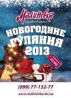 Новогодние гуляния 2013