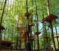 Лень-в-пень, веревочный парк