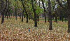 Парк имени Петровского будет открыт в сентябре