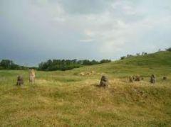 В Донецке воссоздадут Дикое поле