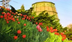 Сегодня в галерее АртДонбасс откроется фотовыставка «Донецк – мой любимый город!»