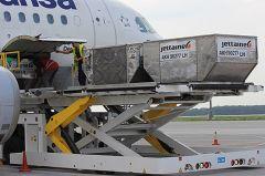 В аэропорту Донецк багаж пассажиров теперь грузят в контейнеры