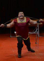 В субботу и воскресенье Донецкий цирк отменил вечерние представления