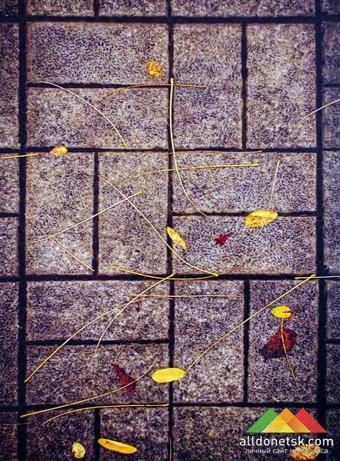 Иероглифы осени