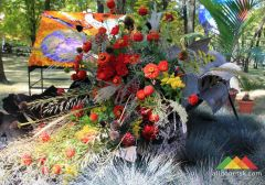 Выставка цветов. Донецк, 2016 г.