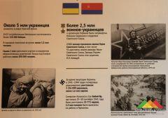 Выставка «В борьбе против нацизма мы были вместе»
