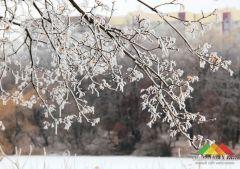 Зима в Донецке (декабрь 2018 г.)