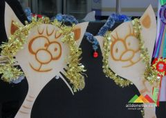 Международная новогодняя выставка кошек (Донецк, декабрь 2019 г.)