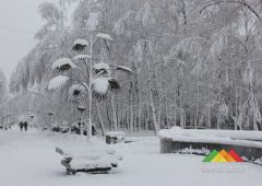 Заснеженный Донецк (2020 г.)