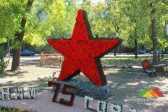 День города Донецка (Выставка цветов)