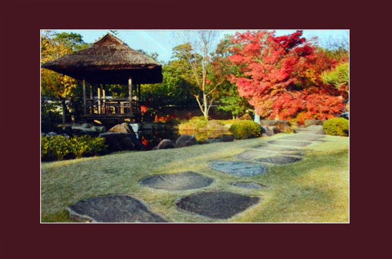 В укромной пагоде на воде японцы предпочитают предаваться длительным дзен-медитациям