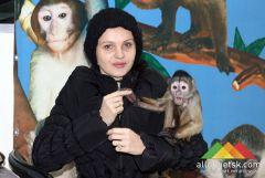 Самая веселая выставка карликовых обезьян в Донецке